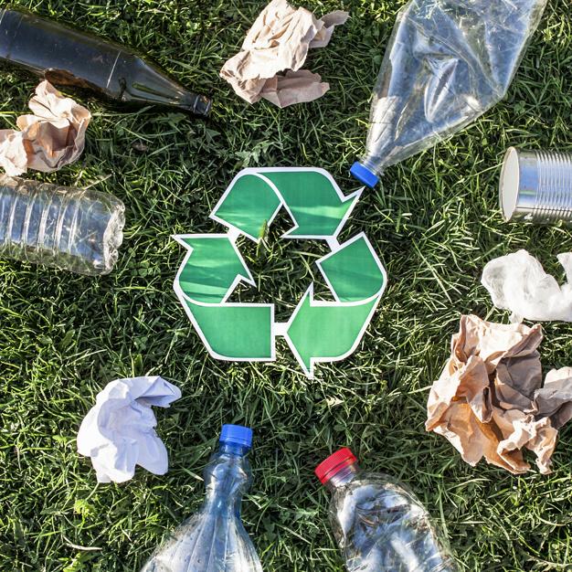 Meio Ambiente: O que faze